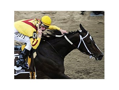 "Rachel Alexandra's appearance in the Preakness drove TV ratings for the race to the highest in five years. <br><a target=""blank"" href=""http://www.bloodhorse.com/horse-racing/photo-store?ref=http%3A%2F%2Fgallery.pictopia.com%2Fbloodhorse%2Fgallery%2FS672162%2Fphoto%2F8118163%2F%3Fo%3D2"">Order This Photo</a>"