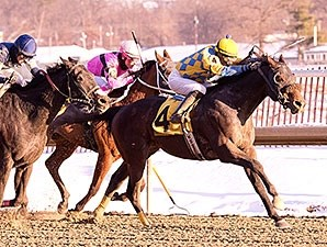 Broad Rule wins the 2014 Fire Plug Stakes.