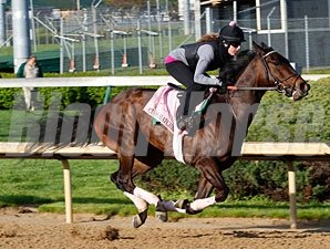Close Hatches, with Joanna Trout up, works towards the Kentucky Oaks.