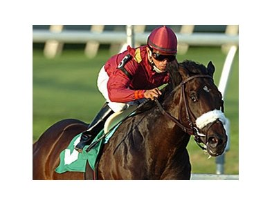 "War Pass has suffered a leg injury that has knocked the colt out of the Kentucky Derby.<br><a target=""blank"" href=""http://www.bloodhorse.com/horse-racing/photo-store?ref=http%3A%2F%2Fpictopia.com%2Fperl%2Fgal%3Fprovider_id%3D368%26ptp_photo_id%3D3670142%26ref%3Dstory"">Order This Photo</a>"