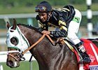"Breeders' Cup Juvenile Sprint winner Hightail <br><a target=""blank"" href=""http://photos.bloodhorse.com/BreedersCup/2012-Breeders-Cup/Juvenile-Sprint/26130236_bRN9v4#!i=2192117358&k=LzNGrpN"">Order This Photo</a>"