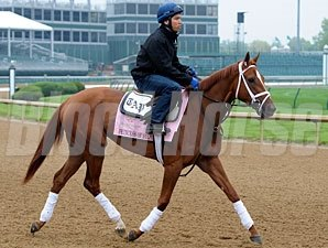 Princess of Sylmar - Churchill Downs, April 29, 2013.