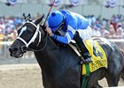 "It's Tricky<br><a target=""blank"" href=""http://photos.bloodhorse.com/AtTheRaces-1/at-the-races-2012/22274956_jFd5jM#!i=1873100564&k=79rrGVw"">Order This Photo</a>"