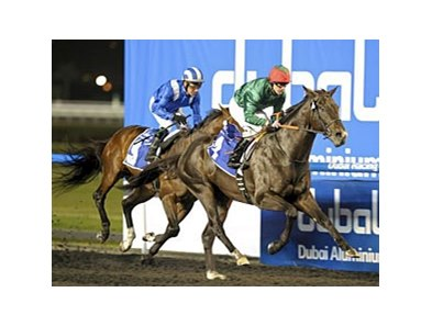 Mendip charges home to win the Al Maktoum Challenge-Round 2.