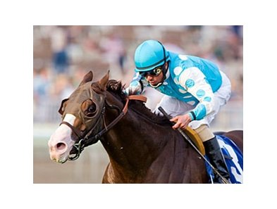Giant Oak, Illinois Thoroughbred Breeders and Owners Foundation 2009 Horse of the Year and champion 3-year-old male.