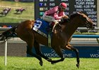 Nikkis Smartypants won the Royal North on the Woodbine turf on July 28.