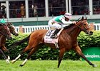 "Aviate won the Churchill Distaff Turf Mile by 1 1/2 lengths.<br><a target=""blank"" href=""http://www.bloodhorse.com/horse-racing/photo-store?ref=http%3A%2F%2Fpictopia.com%2Fperl%2Fgal%3Fprovider_id%3D368%26ptp_photo_id%3D9517342%26ref%3Dstory"">Order This Photo</a>"