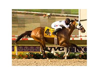 "Pat O'Brien Handicap winner Lewis Michael will stand at Three Chimneys Farm.<br><a target=""blank"" href=""http://www.bloodhorse.com/horse-racing/photo-store?ref=http%3A%2F%2Fpictopia.com%2Fperl%2Fgal%3Fprovider_id%3D368%26ptp_photo_id%3D5670444%26ref%3Dstory"">Order This Photo</a>"
