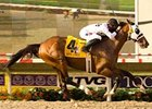 "Lewis Michael set a new seven furlong track record of 1:21.17 in the Pat O'Brien (gr. II). <br><a target=""blank"" href=""http://www.bloodhorse.com/horse-racing/photo-store?ref=http%3A%2F%2Fpictopia.com%2Fperl%2Fgal%3Fprovider_id%3D368%26ptp_photo_id%3D5655004%0D%0A%26ref%3Dstory"">Order This Photo</a>"