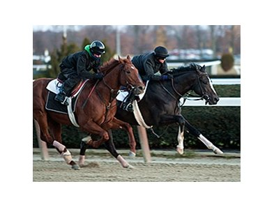 Honor Code, blaze, works 11/24/2013.