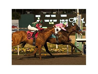 Liaison holding off Rousing Sermon to win the CashCall Futurity at Hollywood Park.