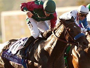 Tamarando wins the 2013 Del Mar Futurity.