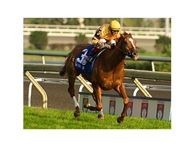 Wise Dan won the 2012 Woodbine Mile by 3 1/4 lengths.