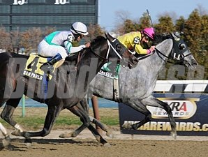 Marilyn's Guy wins the 2012 Excelsior.