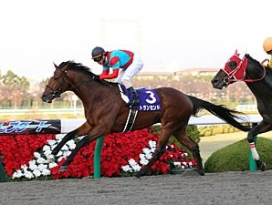 Transcend winning the 2010 Japan Cup Dirt.
