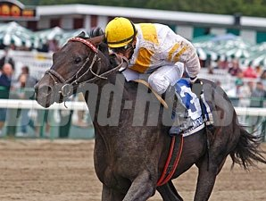 Voodoo Charm wins the 2011 New Jersey Breeders' Handicap.