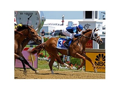 "Mary Russ-Tortora brings Haywired home in front in the Lady Legends for the Cure Race. <br><a target=""blank"" href=""http://photos.bloodhorse.com/TripleCrown/2013-Triple-Crown/Preakness-Stakes-138/29423277_98XmS6#!i=2517684094&k=ZhHN77J"">Order This Photo</a"