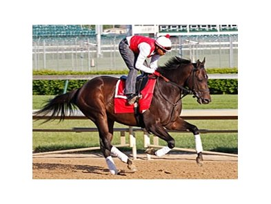 Prospective galloped 1 1/2 miles at Churchill Downs on April 19.