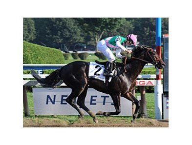 "First Defence scored an impressive win in the Forego (gr. I) at Saratoga. <br><a target=""blank"" href=""http://www.bloodhorse.com/horse-racing/photo-store?ref=http%3A%2F%2Fpictopia.com%2Fperl%2Fgal%3Fprovider_id%3D368%26ptp_photo_id%3D5726222%0D%0A%26ref%3Dstory"">Order This Photo</a>"