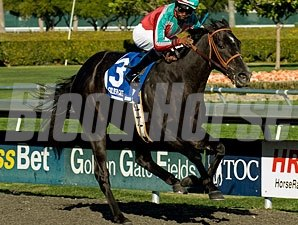 Lady of Fifty wins the 2011 Corte Madera.