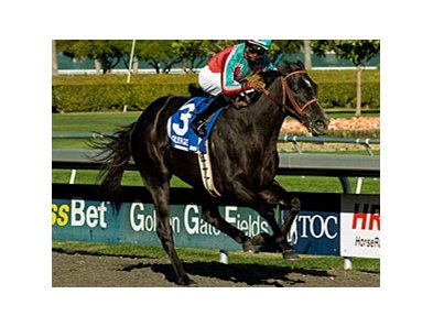 Jerry Hollendorfer has nominated 3 horses to the El Camino Real Derby, including filly Lady of Fifty.