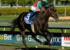 Lady of Fifty After 3rd Straight in Cal Oaks