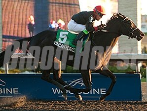 Youcan'tcatchme wins the Ontario Fashion Stakes.