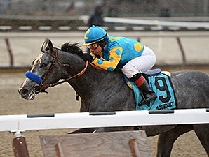 El Kabeir wins the 2015 Jerome Stakes.