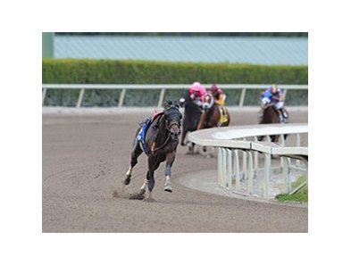 A riderless Fort Larned leads the way in the 2013 Gulfstream Park Handicap.