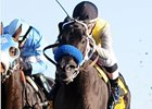 "Great Hot faces seven opponents in the La Canada.<br><a target=""blank"" href=""http://www.bloodhorse.com/horse-racing/photo-store?ref=http%3A%2F%2Fpictopia.com%2Fperl%2Fgal%3Fprovider_id%3D368%26ptp_photo_id%3D9715421%26ref%3Dstory"">Order This Photo</a>"