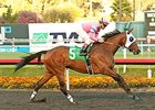 Broken Sword rolls to victory in the Bayakoa Handicap.