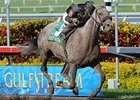 "Stronach Stables' homebred Spring Waltz scored a 3 1/4 length victory in the Rampart Handicap (gr. II) March 9 at Gulfstream Park.<br><a target=""blank"" href=""http://www.bloodhorse.com/horse-racing/photo-store?ref=http%3A%2F%2Fpictopia.com%2Fperl%2Fgal%3Fprovider_id%3D368%26ptp_photo_id%3D3798557%26ref%3Dstory"">Order This Photo</a>"