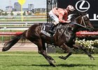 Black Caviar Aussie Racehorse of the Year