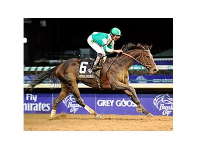 Royal Delta will compete in the Dubai World Cup.