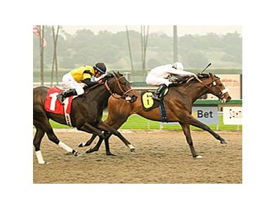 "Colonel John holds off El Gato Malo to win the Sham Stakes.<br><a target=""blank"" href=""http://www.bloodhorse.com/horse-racing/photo-store?ref=http%3A%2F%2Fpictopia.com%2Fperl%2Fgal%3Fprovider_id%3D368%26ptp_photo_id%3D3724305%26ref%3Dstory"">Order This Photo</a>"
