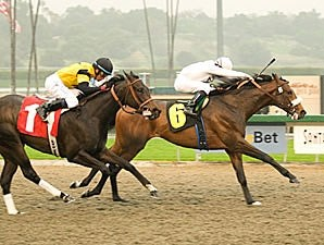 Colonel John holds off El Gato Malo to win the Sham Stakes.