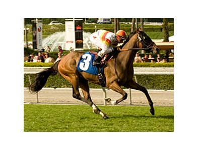 "Bourbon Bay will be the heavy favorite in the San Juan Capistrano Handicap.<br><a target=""blank"" href=""http://www.bloodhorse.com/horse-racing/photo-store?ref=http%3A%2F%2Fpictopia.com%2Fperl%2Fgal%3Fprovider_id%3D368%26ptp_photo_id%3D8849999%26ref%3Dstory"">Order This Photo</a>"