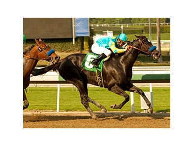 "Mother Ruth is one of three for trainer Bob Baffert in the Las Flores.<br><a target=""blank"" href=""http://www.bloodhorse.com/horse-racing/photo-store?ref=http%3A%2F%2Fpictopia.com%2Fperl%2Fgal%3Fprovider_id%3D368%26ptp_photo_id%3D9361161%26ref%3Dstory"">Order This Photo</a>"