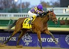 "2010 Breeders' Cup Juvenile Fillies winner Awesome Feather<br><a target=""blank"" href=""http://www.bloodhorse.com/horse-racing/photo-store?ref=http%3A%2F%2Fpictopia.com%2Fperl%2Fgal%3Fprovider_id%3D368%26ptp_photo_id%3D9279503%26ref%3Dstory"">Order This Photo</a>"