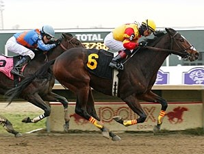 Arlo wins the 2012 Auld Lang Syne Stakes.
