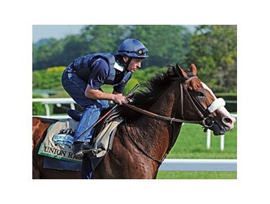 "Union Rags<br><a target=""blank"" href=""http://photos.bloodhorse.com/TripleCrown/2012-Triple-Crown/Belmont-Stakes-144/23333063_3WZKbw#!i=1894859639&k=Fkpd2nW"">Order This Photo</a>"