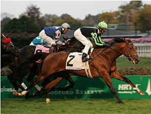 Nistle's Crunch wins the 2008 Commonwealth Turf.