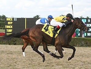 King Congie wins the 2011 Tropical Park Derby.