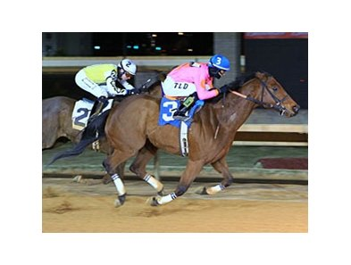 Immortal Eyes will attempt to get his first victory at Pimlico Race Course in the Maryland Sprint Handicap.