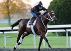 "Havre de Grace<br><a target=""blank"" href=""http://www.bloodhorse.com/horse-racing/photo-store?ref=http%3A%2F%2Fpictopia.com%2Fperl%2Fgal%3Fprovider_id%3D368%26ptp_photo_id%3D9716257%26ref%3Dstory"">Order This Photo</a>"