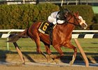 "Rodman pulls away to an easy victory in the Queens County.<br><a target=""blank"" href=""http://www.bloodhorse.com/horse-racing/photo-store?ref=http%3A%2F%2Fpictopia.com%2Fperl%2Fgal%3Fprovider_id%3D368%26ptp_photo_id%3D8693635%26ref%3Dstory"">Order This Photo</a>"