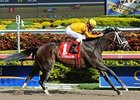 "Kauai Katie cruises to victory in the Old Hat Stakes.<br><a target=""blank"" href=""http://photos.bloodhorse.com/AtTheRaces-1/at-the-races-2013/27257665_QgCqdh#!i=2299492020&k=Q8FZvt5"">Order This Photo</a>"