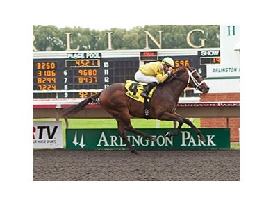 Solitary Ranger won the Arlington-Washington Futurity by 5 1/2 lengths on Sept. 7.