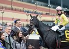 Condo Commando