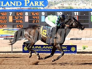 Tricky Causeway wins the 2012 Adios Amigos Claiming Handicap.